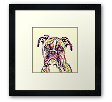 The Mighty Boxer Framed Print