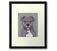 Junior Framed Print