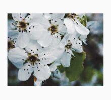 Salt Kettle Spring Flowers Baby Tee
