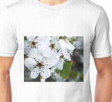 Salt Kettle Spring Flowers Unisex T-Shirt