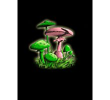 Mushrooms (Red Green Colored) Photographic Print