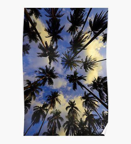 Palms Beach Poster