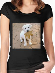 Patriotic Puppy Women's Fitted Scoop T-Shirt