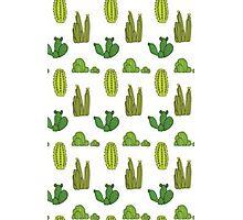 Cacti Photographic Print