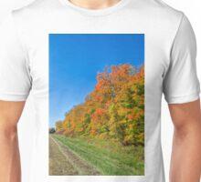 Fleeting Beauty Unisex T-Shirt