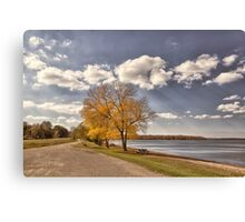 Along Cass Lake Canvas Print