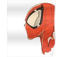 Spiderman's Profile Poster