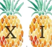 Alpha Xi Delta Pineapples  Sticker