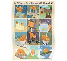 Where Can Plumduff Sleep? Poster