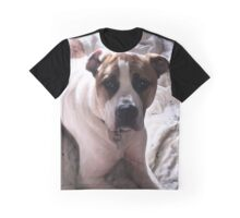 American Bulldog cross Northern Inuit  Graphic T-Shirt