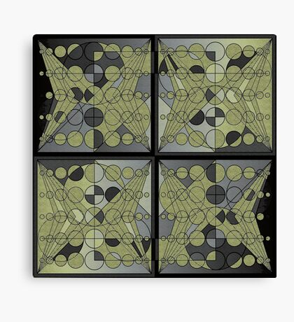 Circles and lines Canvas Print