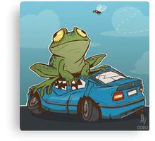 0050 - Leap Day Canvas Print
