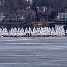 Ice sailing -  Madison - Wisconsin by Steven Ralser