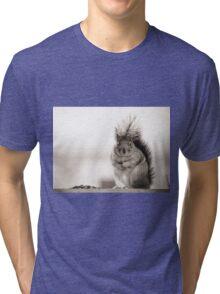 Fat Squirrel Tri-blend T-Shirt