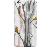 orange trees  iPhone Case/Skin