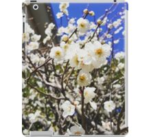 Plum Blossoms in Spring iPad Case/Skin