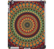 Mandala 14 iPad Case/Skin