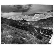 Utah - Flaming Gorge 002 BW Poster