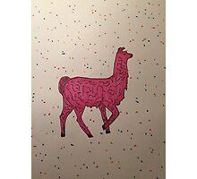 Party pink llama  Photographic Print
