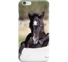 Cheeky Foal iPhone Case/Skin