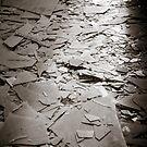 Broken Light by Natalie Ord