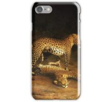 Jacques Laurent Agasse, Two Leopards Lying in the Exeter iPhone Case/Skin
