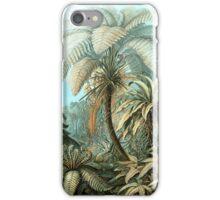 Botanical, vintage, ferns, palm trees, rainforest iPhone Case/Skin