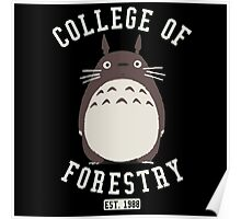 College of Forestry Poster