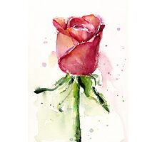 Rose Watercolor Painting Photographic Print
