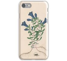 James Bolton, active , Liverpool Gentian with One Insect iPhone Case/Skin