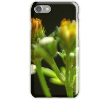 One MOment Is All That MAtters iPhone Case/Skin