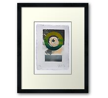 Green silkscreen and Gold leaf 'drawing'. 6 of 6. Framed Print