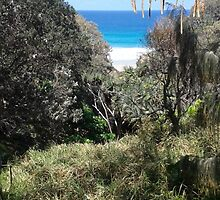 Up on the Cliffs.. Stradbroke Island. by MardiGCalero