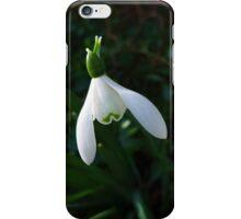 Single snowdrop  iPhone Case/Skin