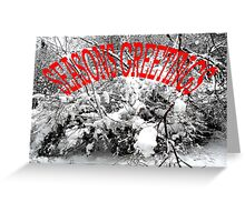 SEASONS GREETINGS 39 Greeting Card
