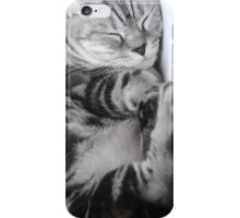 Sleeping Kitty iPhone Case/Skin
