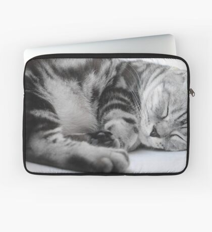 Sleeping Kitty Laptop Sleeve