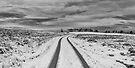 Winter Wonderland in Central Scotland by Jeremy Lavender Photography