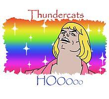 ThunderCats HO- Ft. HeMan Photographic Print
