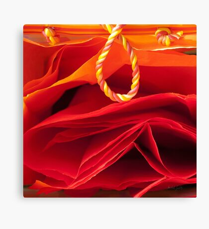 Gift of Fire Canvas Print