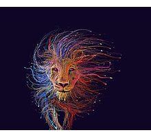 Lion cap Photographic Print