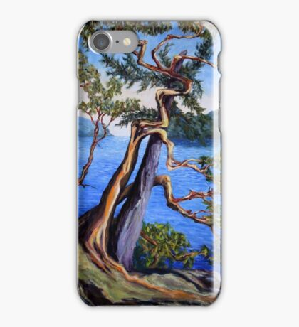 Southern Gulf Islands Afternoon iPhone Case/Skin