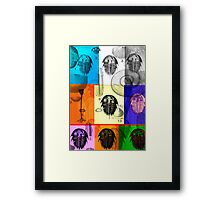 Fossils Framed Print