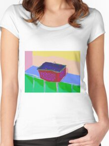Hangers in a Basket Women's Fitted Scoop T-Shirt