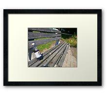 rootbeer bench Framed Print