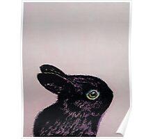 Black Bunny Poster