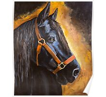 Fern, Percheron Draft Horse Poster