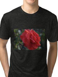 Prosperity - red rose Tri-blend T-Shirt
