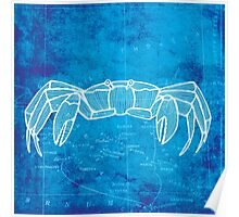 Crab, Illustration Over Nautical Map Poster