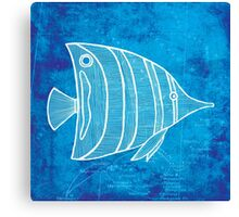 Fish, Illustration Over Nautical Map Canvas Print